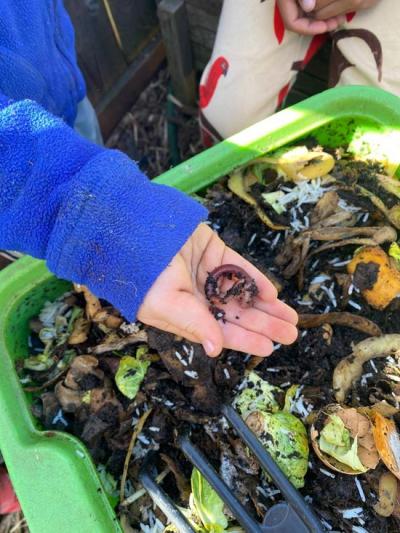 LesKidz-Worm-compost